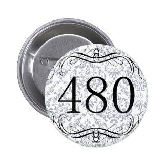 480 Area Code Pin