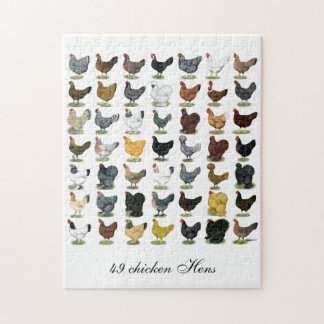 49 Chicken Hens Jigsaw Puzzle