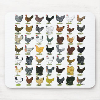 49 Chicken Hens Mouse Pad