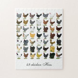 49 Chicken Hens Puzzle