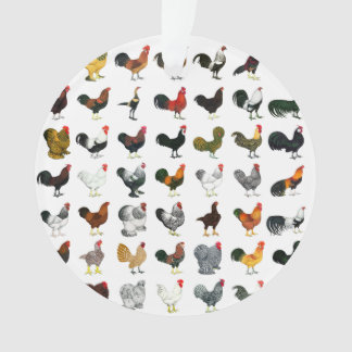 49 Roosters