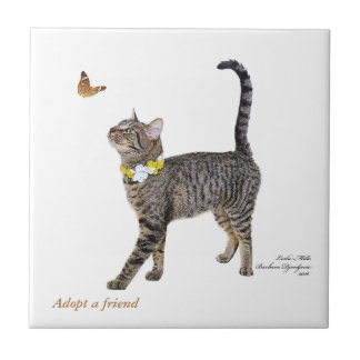 "4.25"" x 4.25"" tile featuring Tabatha"