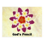 4 Gods Pencil Postcards