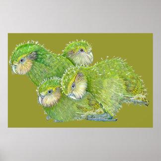4 kakapo fledgelings print