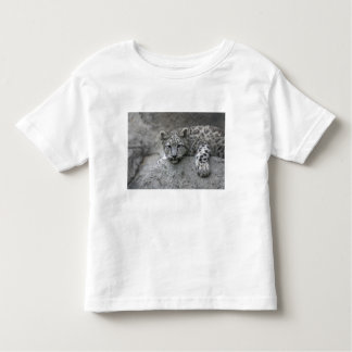 4 month old Snow leopard cub draped over a rock Toddler T-Shirt
