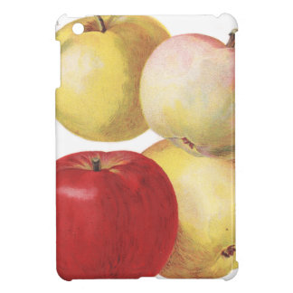 4 vintage apples illustrated case case for the iPad mini