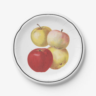 4 vintage apples illustrated paper plate 7 inch paper plate