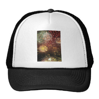 4th of July Fireworks Cap