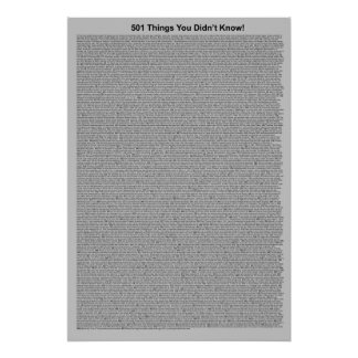 501 Things You Didn't Know (Gray) Poster