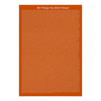 501 Things You Didn't Know (Pumpkin Pie) Poster