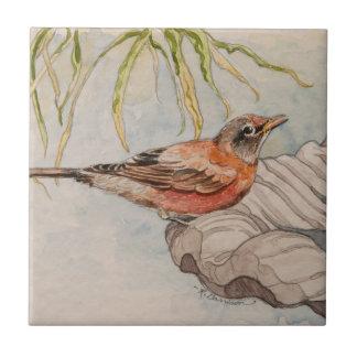 5296 Robin on Bird Bath Tile