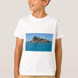 52-SEY-0622-8697.jpg T-shirt
