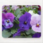 5 Purple Lavender Blue Pansies Mousemats