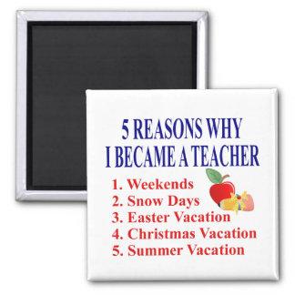 5 Reasons I Became A Teacher Funny Magnet