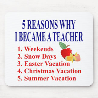 5 Reasons I Became A Teacher Funny Mousepad