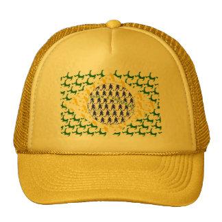 5 star soccer player flag of brazil cap
