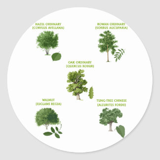 5 Trees Round Sticker