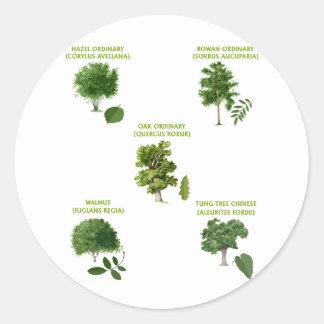 5 Trees Round Stickers