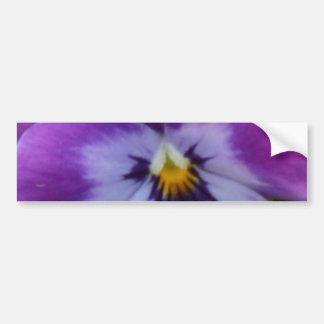 5a Lavender Purple Blue Pansy Bumper Sticker