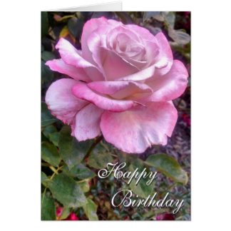 5x7 Pink and White Rose Birthday Card