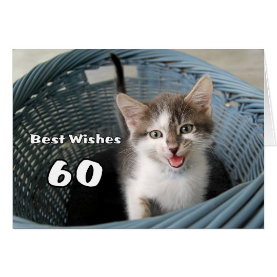 60th Birthday Crazy Kitten Card