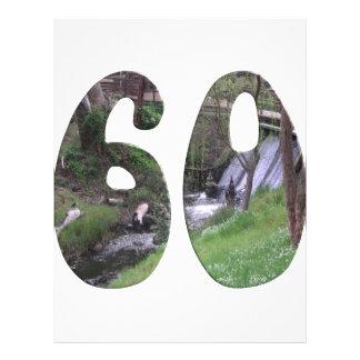 60th Birthday Flyers