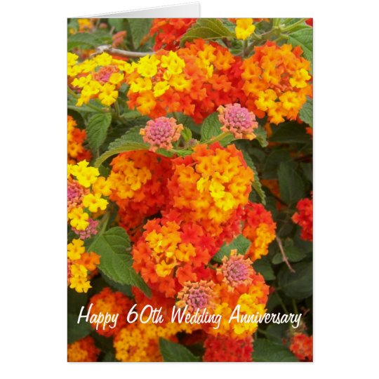 60th Wedding Anniversary Lantana Card