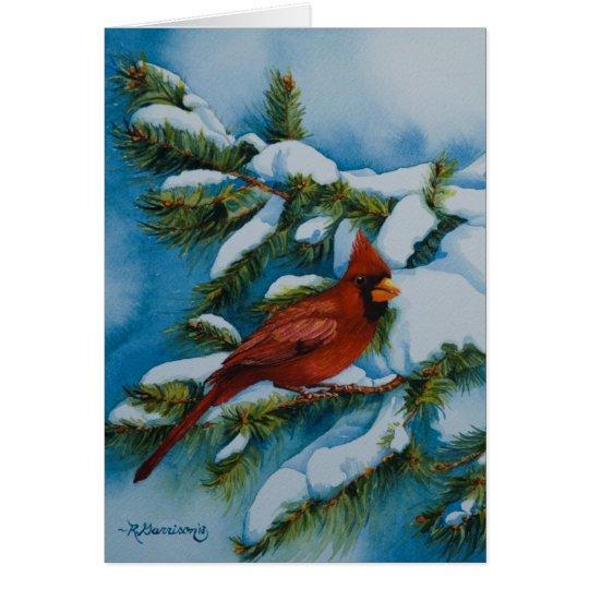 6478 Cardinal in Pine Christmas Card