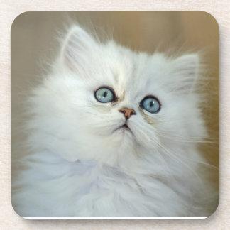 6 Hard Plastic Kitten Coasters, Cork Back Coaster