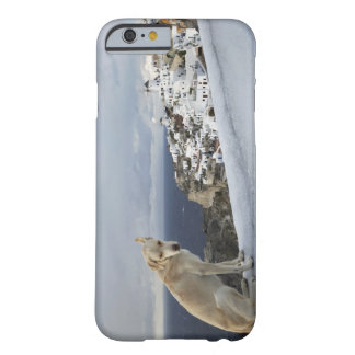 6-Nov Barely There iPhone 6 Case