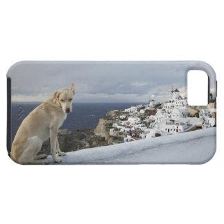 6-Nov iPhone 5 Cases