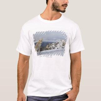 6-Nov T-Shirt