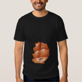 6 Pack Shirt