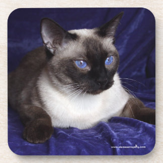 6 Siamese Hard Plastic coasters with cork back