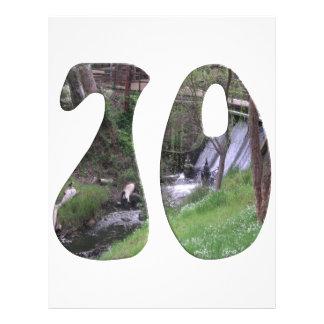 70th Birthday Flyer