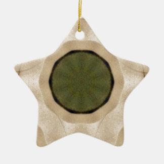 74.jpg ceramic star decoration