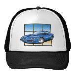 79-81 Trans Am Hat