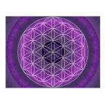 7 crown chakra created by Tutti Post Cards