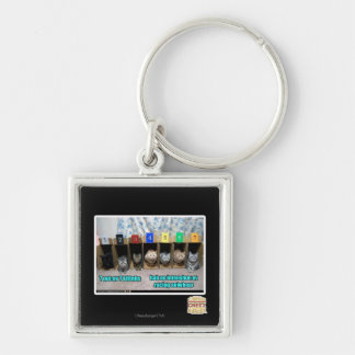 7 out ov 7 kittehs key ring