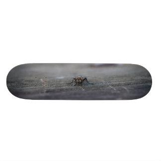"7¾"" Skateboard (Fly)"