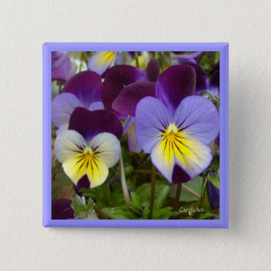 7a Blue Yellow Purple Violas 15 Cm Square Badge