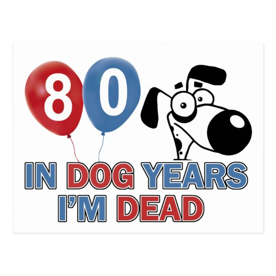 80 year old Dog years designs Postcard