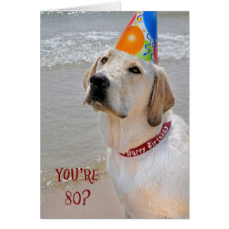 80th Birthday Retriever Greeting Card