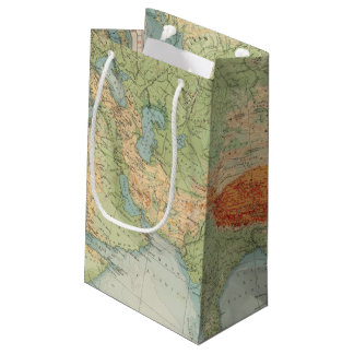 8485 Asia physical Small Gift Bag