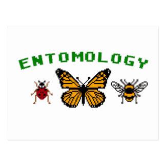 8-Bit Entomology Postcard