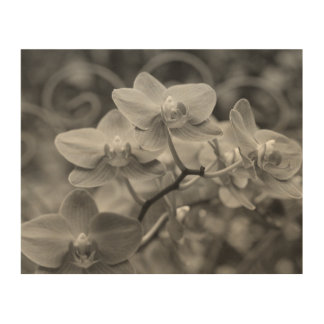 """8""""x10"""" Orchid flowers wood wall art"""