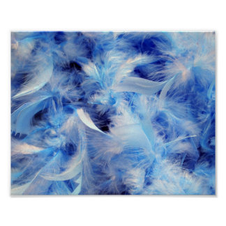 8x10 Fluffy Feathers Posters