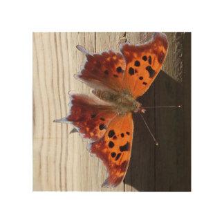 8X8 Orange Butterfly Wood Print