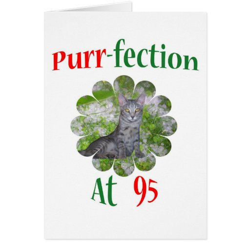 95 Purr-fection Greeting Cards