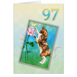 97th Birthday with a playful cat Card